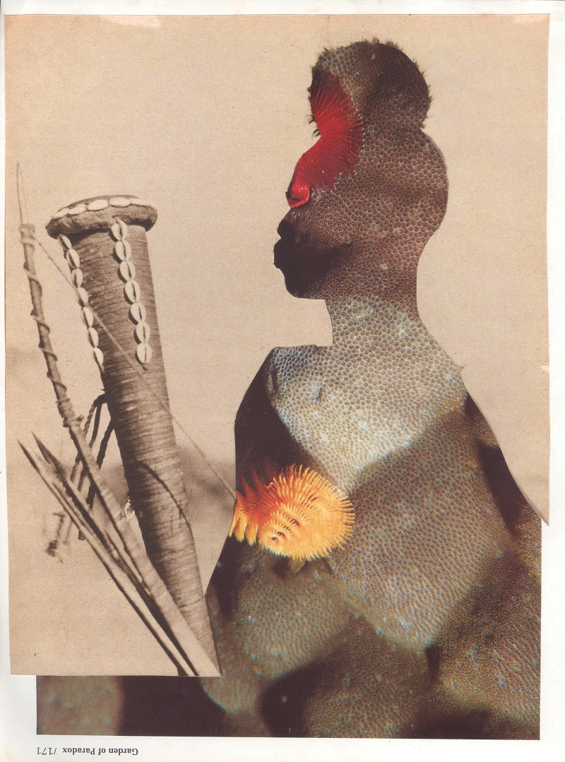 African man with spear cut collage by Anna-Maria Bribiesca
