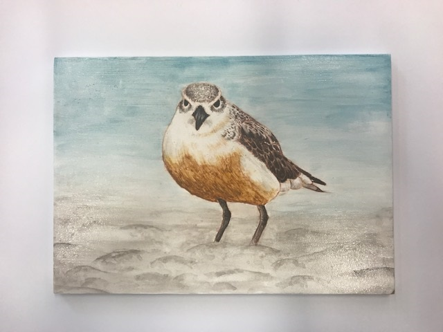 Student art work Iconic NZ Birds