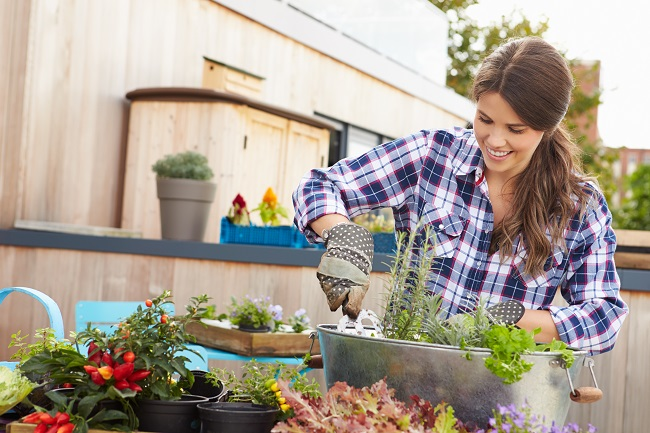 Woman using hand tool to care for vege planter