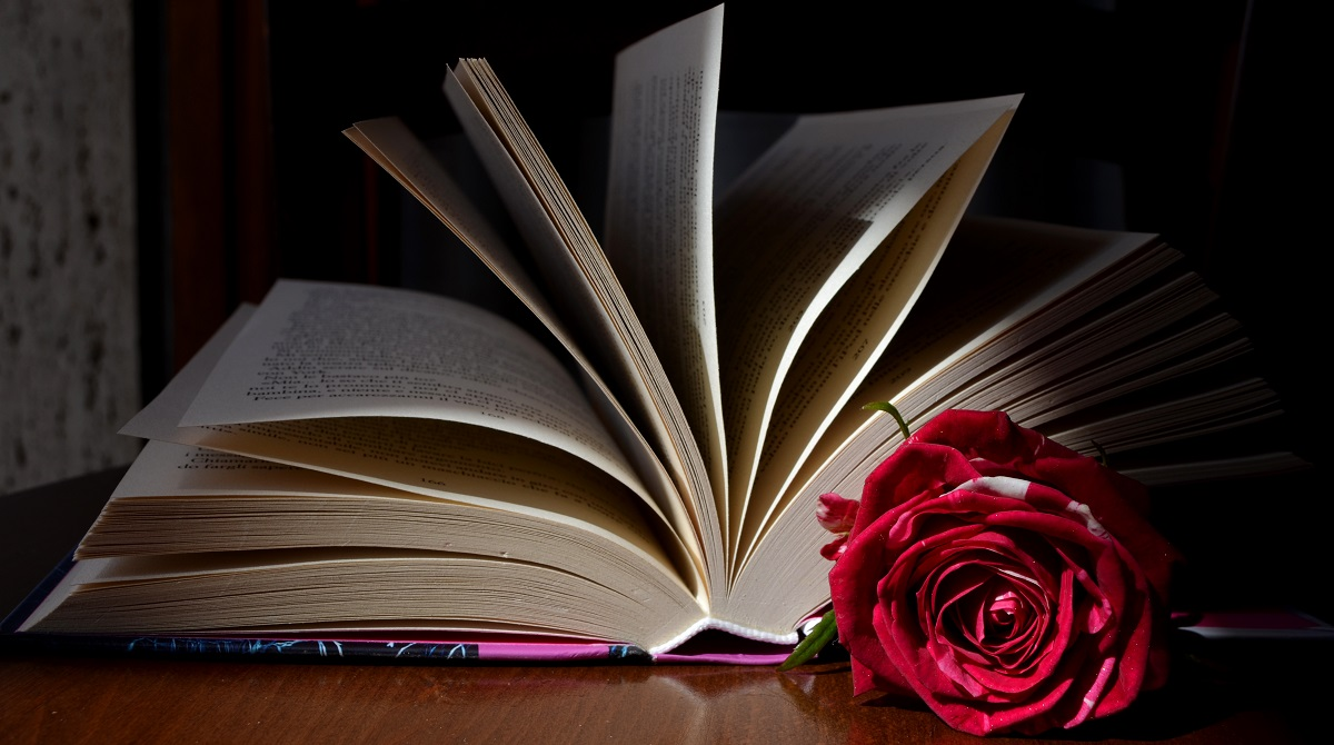 How to Write a Romance Novel - book with rose
