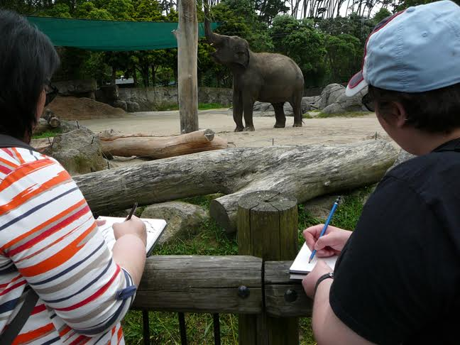 Sketching Animals at the Zoo